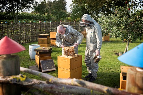 Beehives in Polyurethane